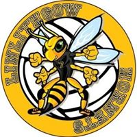 Linlithgow Hornets Volleyball Club