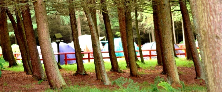 Beecraigs Camping