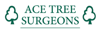 ace tree surgeons logo