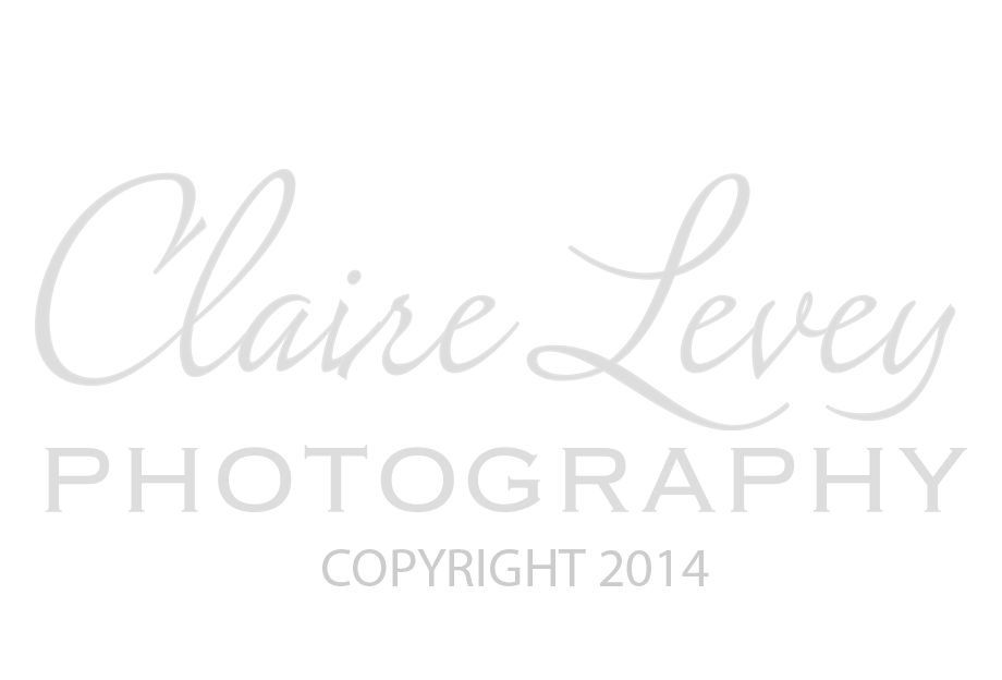 Claire Levy Photography Logo