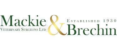 Mackie & Brechin Veterinary Surgeons Ltd