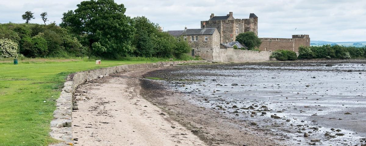 seashore foraging