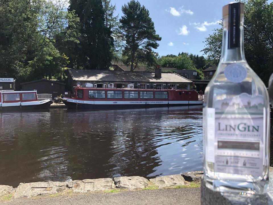 LinGin Cruise