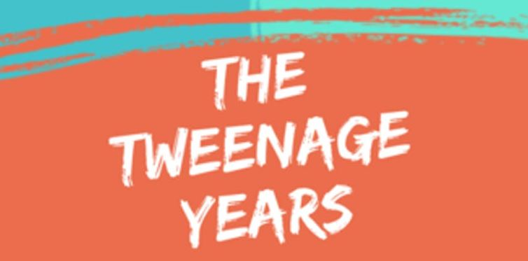 Poster for The Tweenage Years