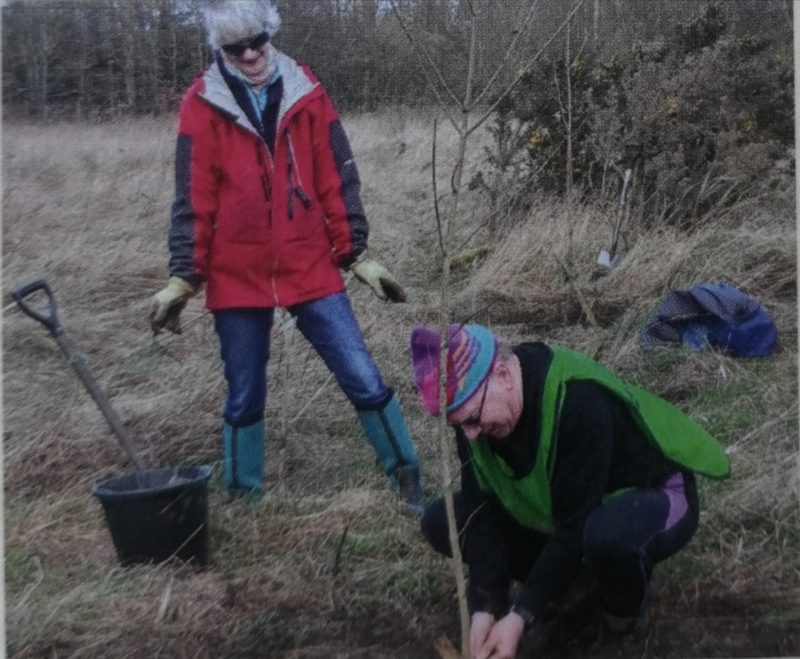 Photo of a couple planting trees