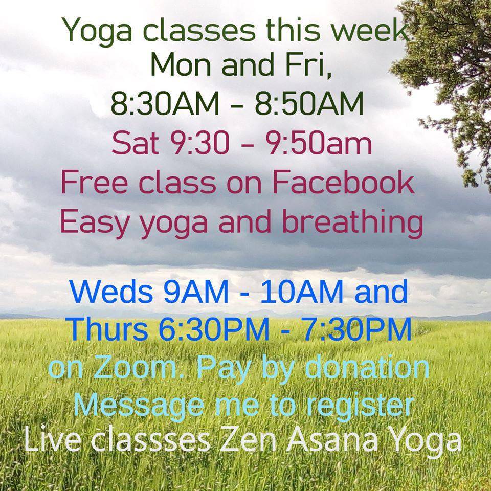 Zen asana yoga schedule