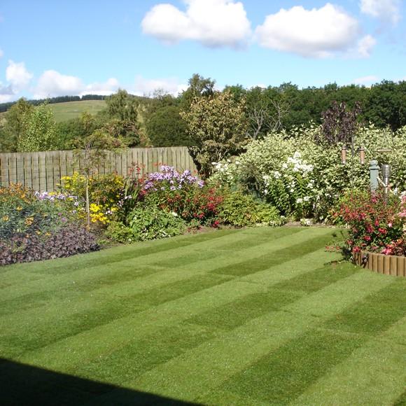 Lawn-Turf-Lawn